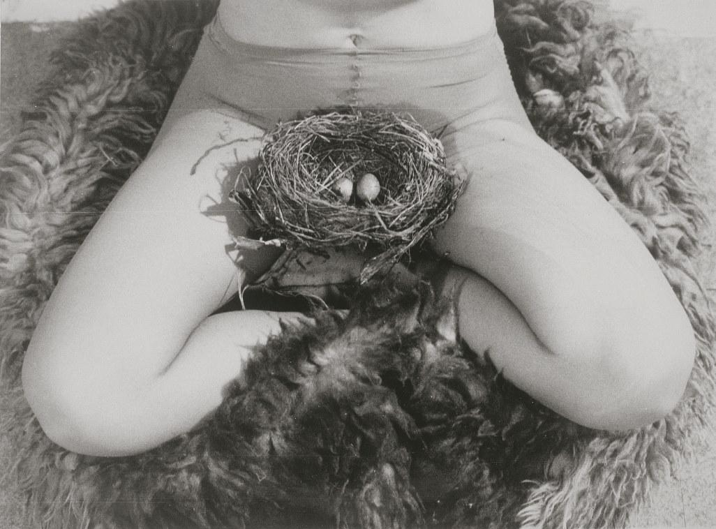 06_juergenssen_nest_1979